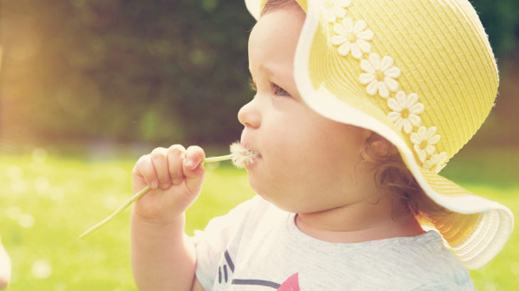 Beautiful little curly girl with dandelion in mouth